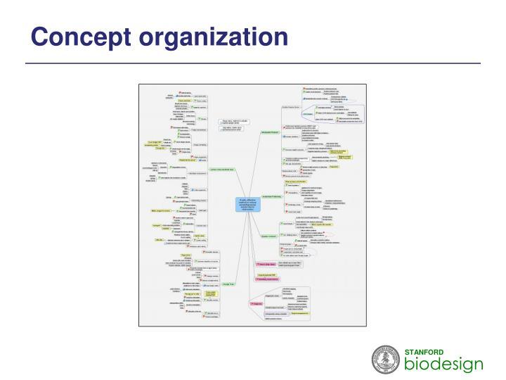 Concept organization