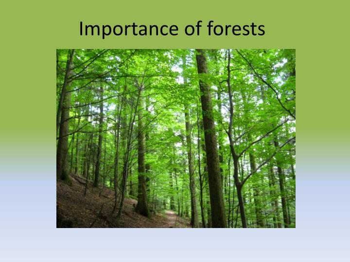 importance of forests n.
