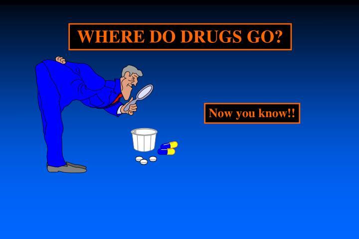WHERE DO DRUGS GO?