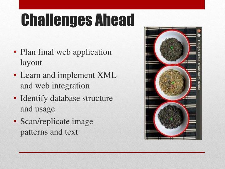 Plan final web application layout