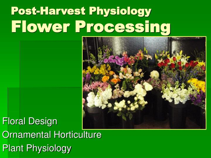 post harvest physiology flower processing n.