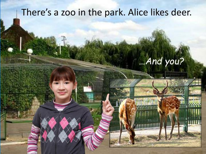 There's a zoo in the park. Alice