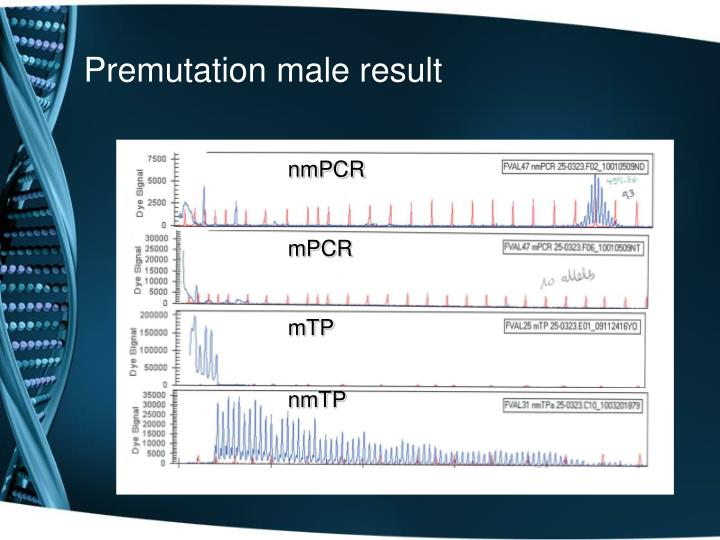 Premutation male result