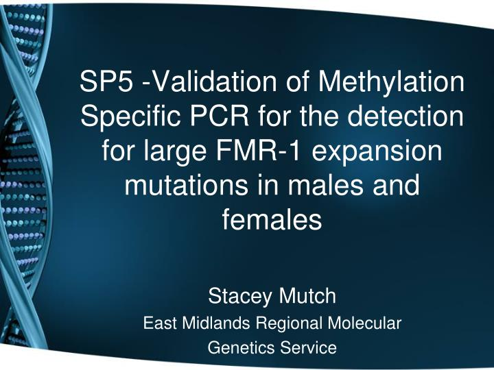 SP5 -Validation of Methylation Specific PCR for the detection for large FMR-1 expansion mutations in...