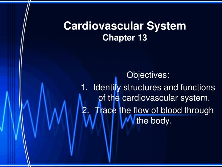 cardiovascular system chapter 13 n.