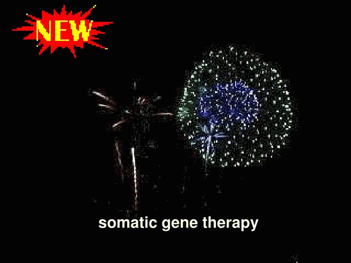 somatic gene therapy