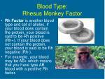blood type rhesus monkey factor