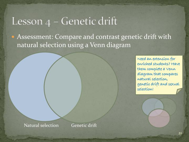 Ppt teaching the concept of mechanism of evolution powerpoint lesson 4 genetic drift assessment compare and contrast genetic drift with natural selection using a venn diagram ccuart Image collections