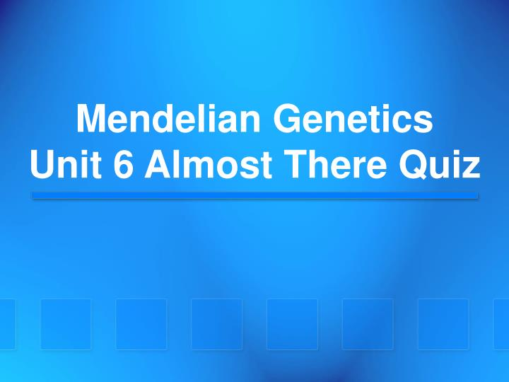 mendelian genetics unit 6 almost there quiz n.