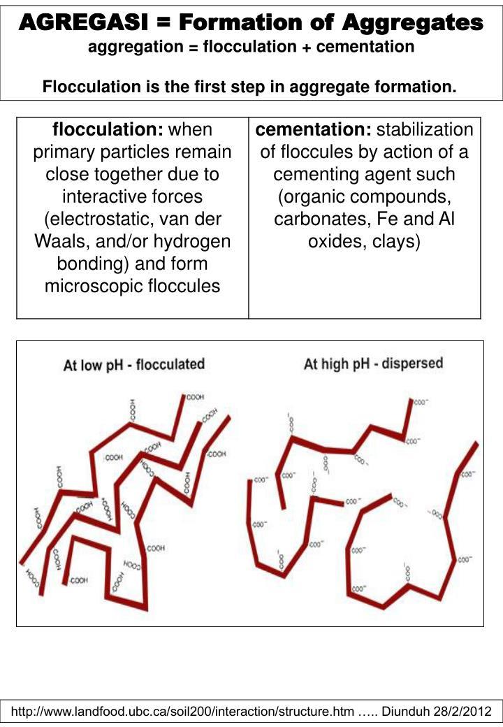 AGREGASI = Formation of Aggregates