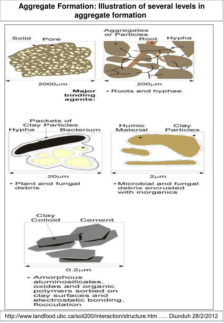 Aggregate Formation: Illustration of several levels in aggregate formation