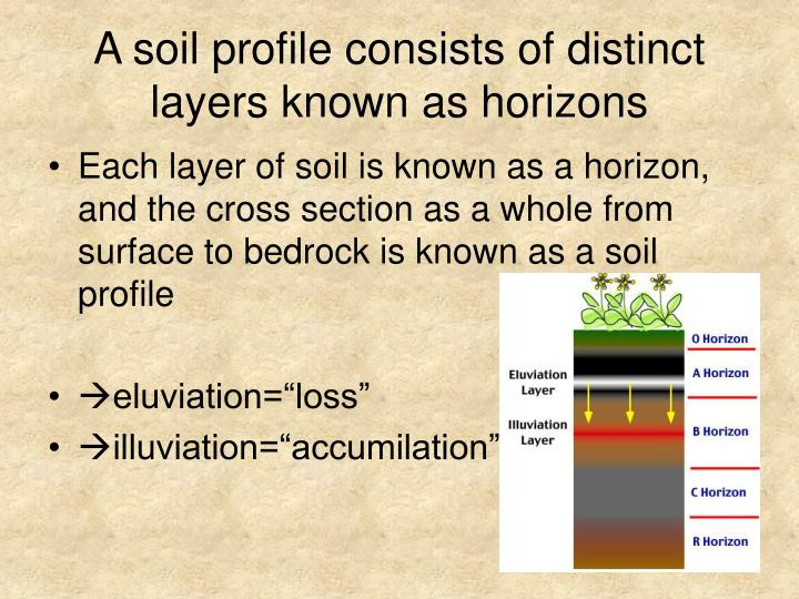 A soil profile consists of distinct layers known as horizons