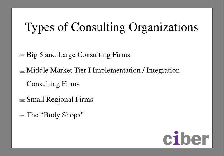 Types of Consulting Organizations