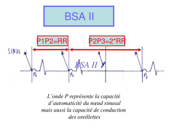 BSA II