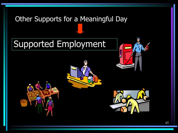 Other Supports for a Meaningful Day