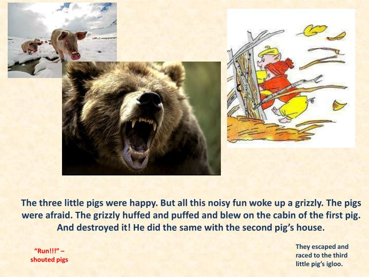 The three little pigs were happy. But all this noisy fun woke up a grizzly. The pigs were afraid. The grizzly huffed and puffed and blew on the cabin of the first pig. And destroyed it! He did the same with the second pig's house.