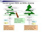 verskil tussen no3 en nh4 bronne