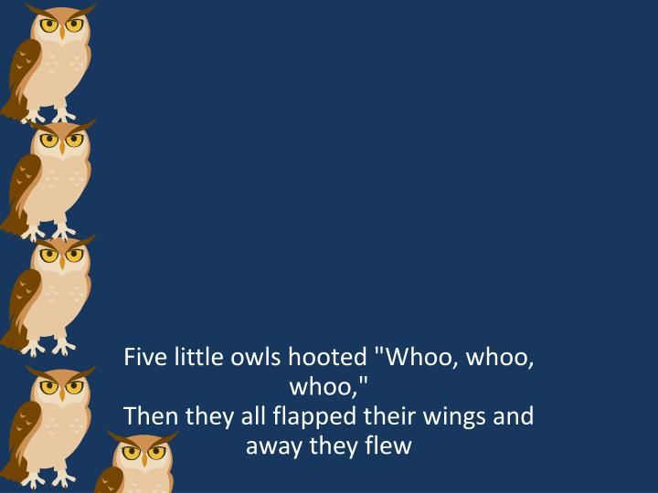 """Five little owls hooted """""""