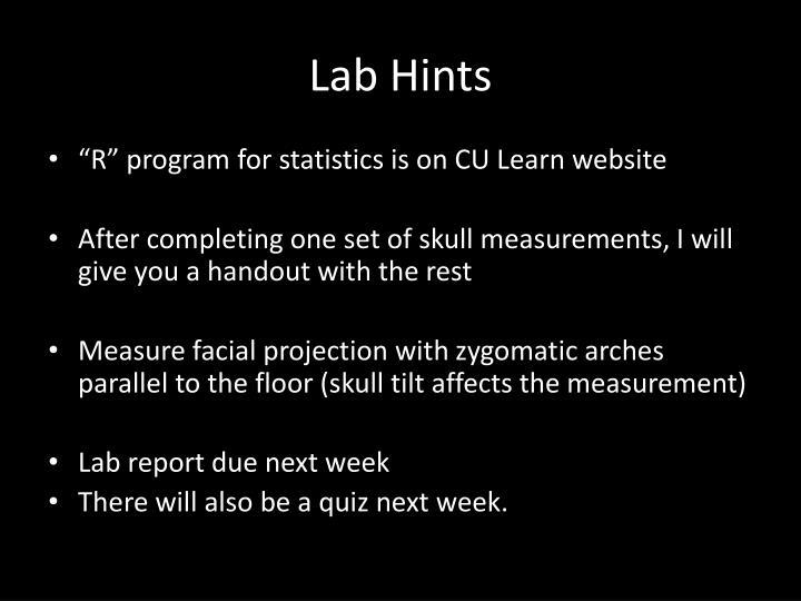 Lab Hints