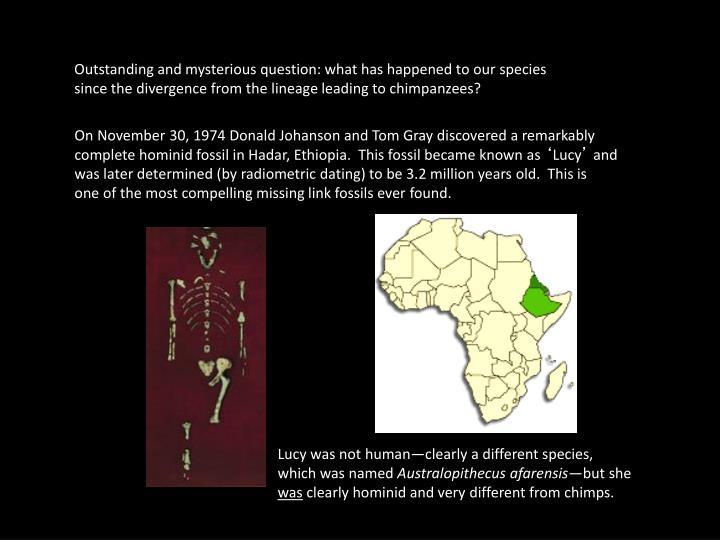 On November 30, 1974 Donald Johanson and Tom Gray discovered a remarkably