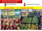 mangga impor vs mangga asal lokal