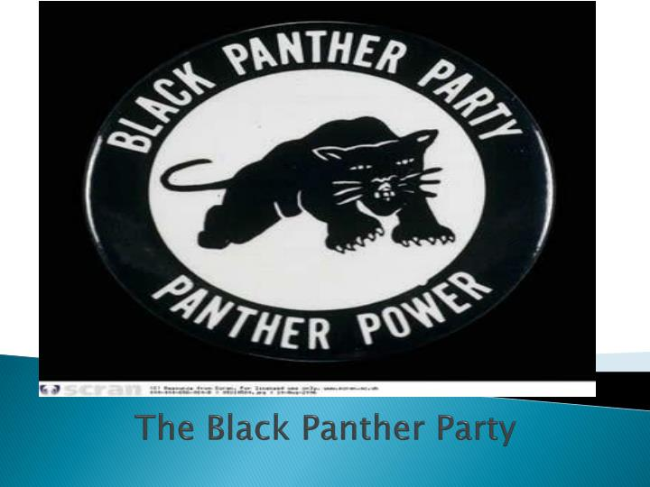the black panther party n.