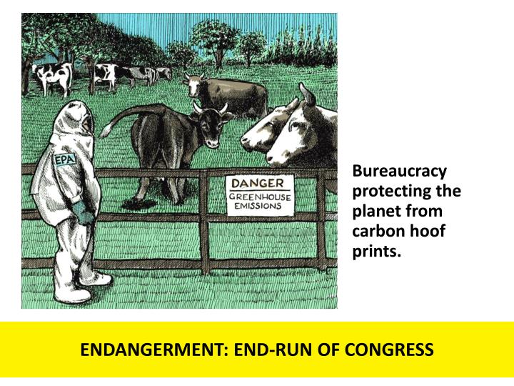 Bureaucracy protecting the planet from carbon hoof prints.