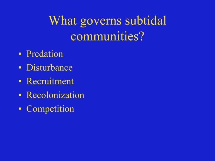 What governs subtidal communities?