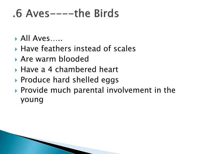 .6 Aves----the Birds
