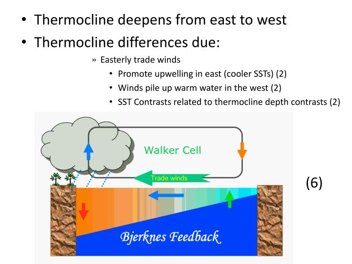 Thermocline deepens from east to west