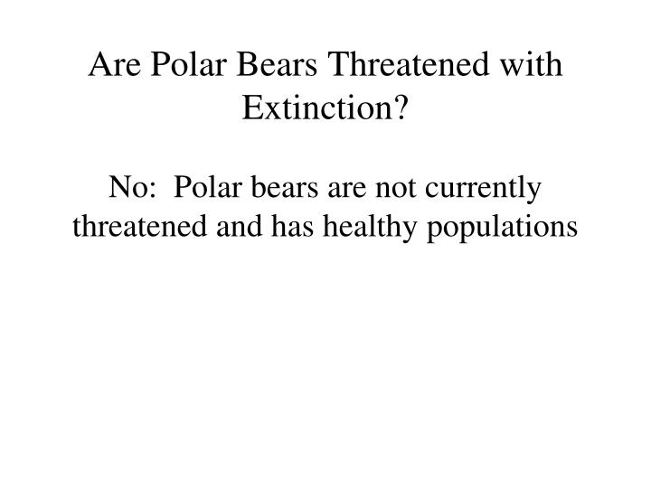 Are Polar Bears Threatened with Extinction?