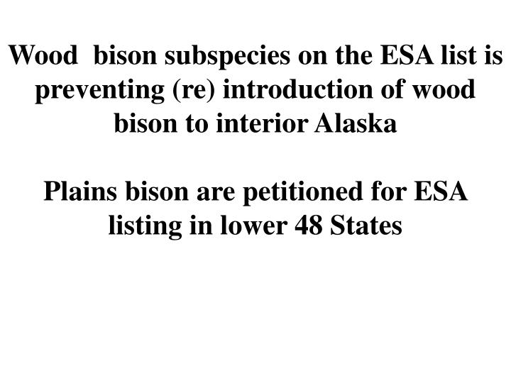 Wood  bison subspecies on the ESA list is preventing (re) introduction of wood bison to interior Alaska
