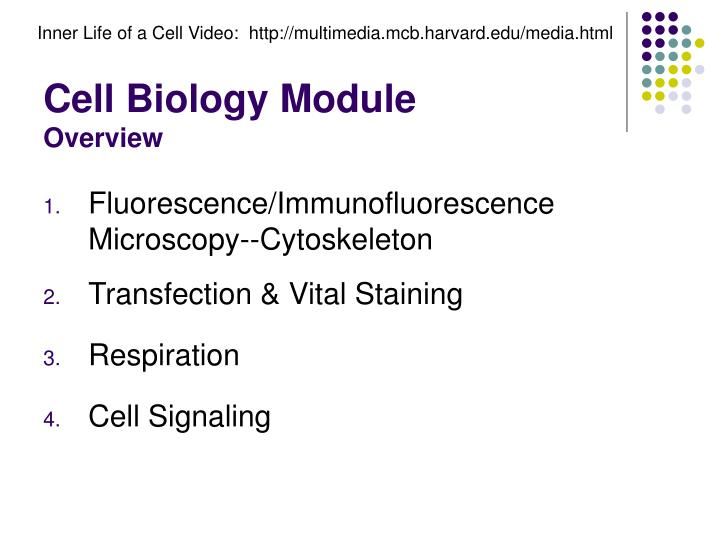 Cell biology module overview