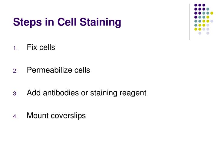 Steps in Cell Staining
