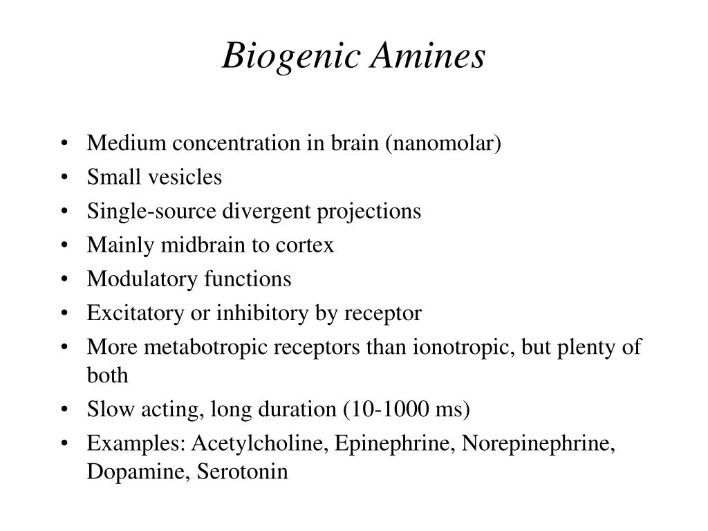 PPT - COGNITIVE SCIENCE 17 The Chemical Brain Part 1