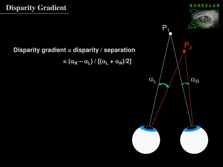 Disparity Gradient