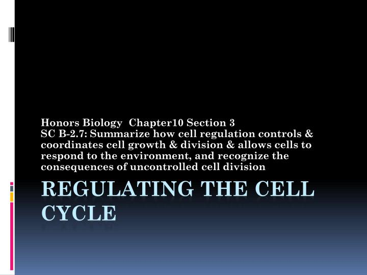 regulating the cell cycle n.