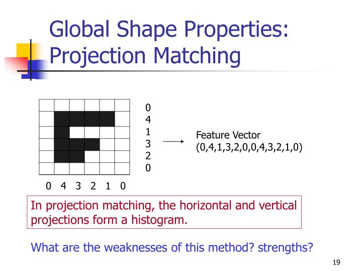 Global Shape Properties: