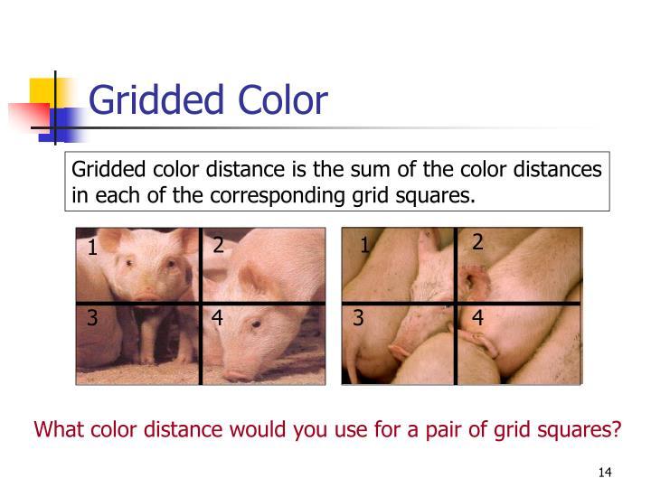 Gridded Color
