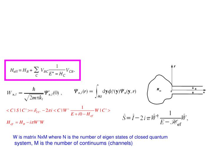 W is matrix NxM where N is the number of eigen states of closed quantum