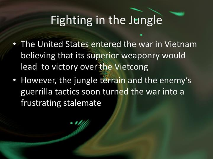Fighting in the Jungle
