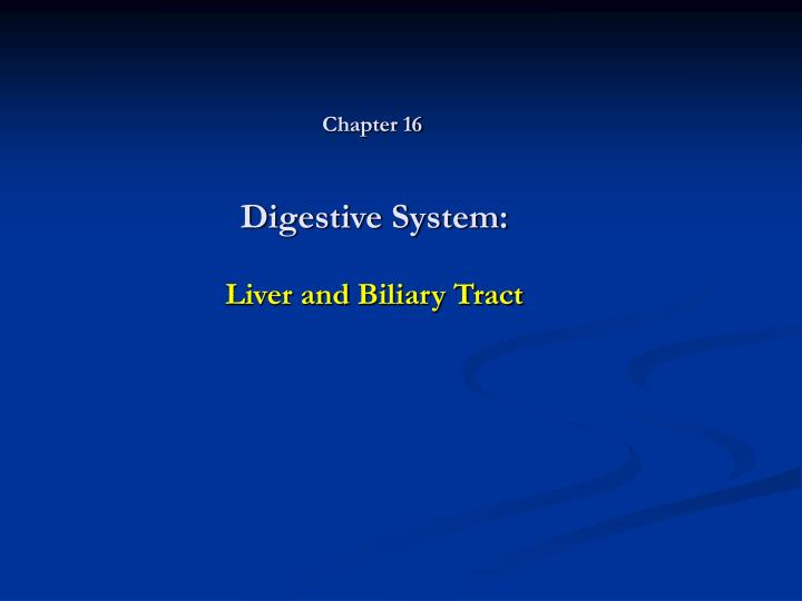 digestive system liver and biliary tract n.