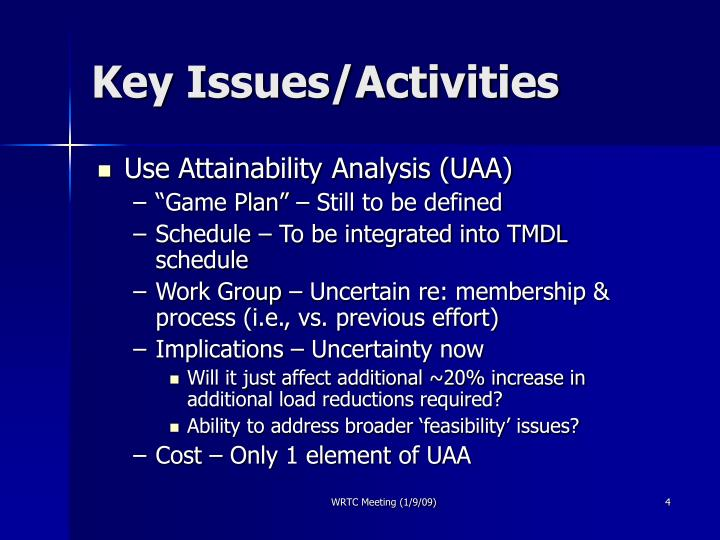 Key Issues/Activities