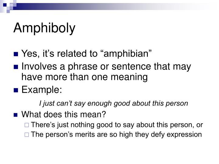Amphiboly