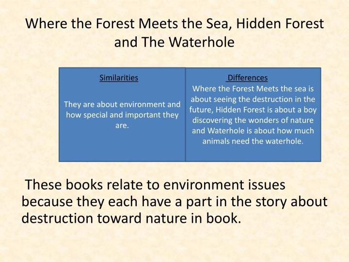 Where the Forest Meets the Sea, Hidden Forest and The Waterhole