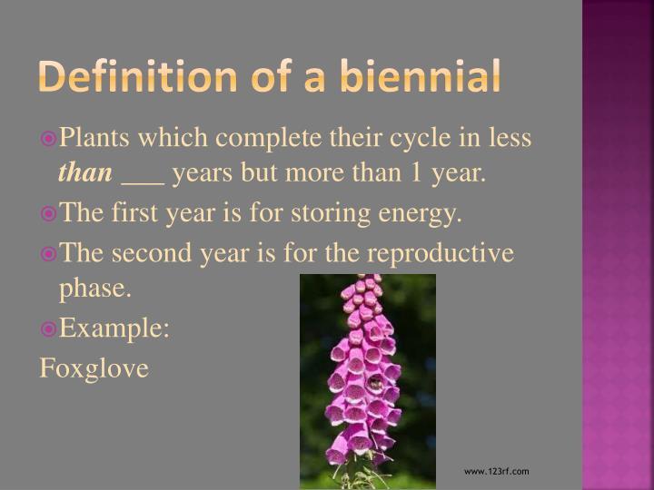 Definition of a biennial