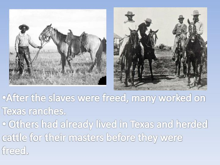 After the slaves were freed, many worked on