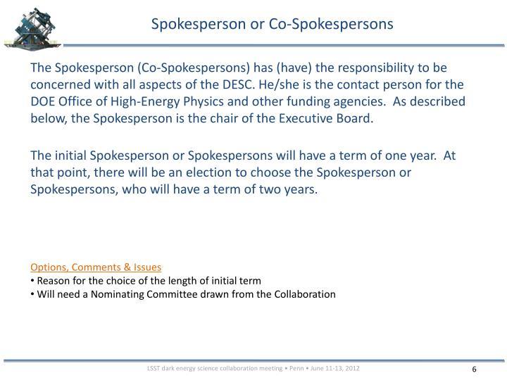 Spokesperson or Co-Spokespersons