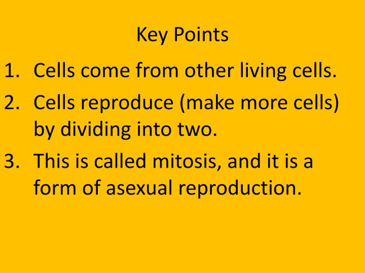 Verbs 3 forms of asexual reproduction