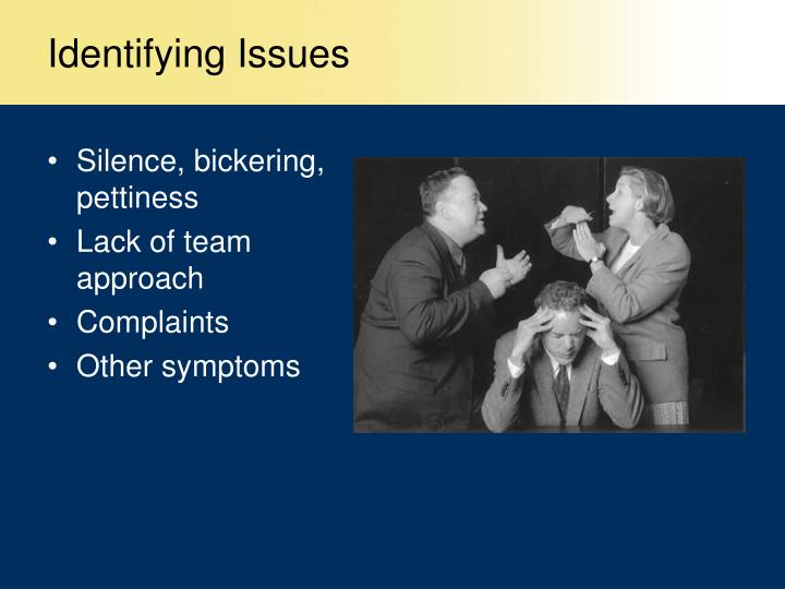 Identifying Issues